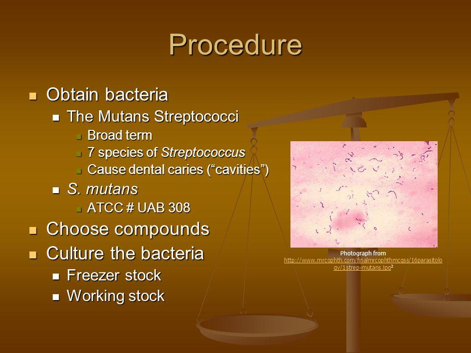 Procedure Obtain bacteria Obtain bacteria The Mutans Streptococci The Mutans Streptococci Broad term Broad term 7 species of Streptococcus 7 species o