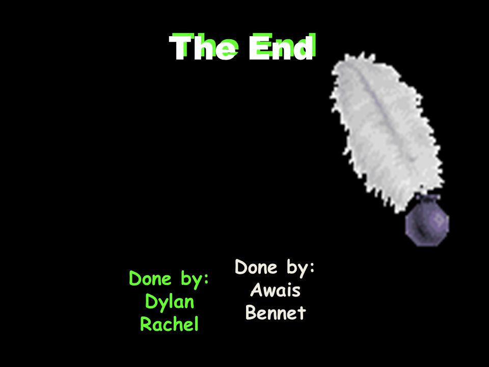 The End Done by: Awais Bennet Done by: Dylan Rachel The End