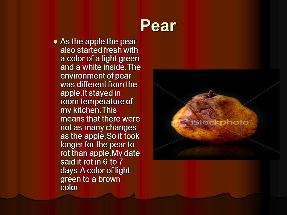 Pear As the apple the pear also started fresh with a color of a light green and a white inside.The environment of pear was different from the apple.It stayed in room temperature of my kitchen.This means that there were not as many changes as the apple.So it took longer for the pear to rot than apple.My date said it rot in 6 to 7 days.A color of light green to a brown color.