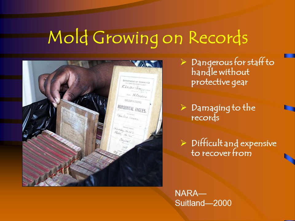 Mold Growing on Records NARA— Suitland—2000  Dangerous for staff to handle without protective gear  Damaging to the records  Difficult and expensive to recover from