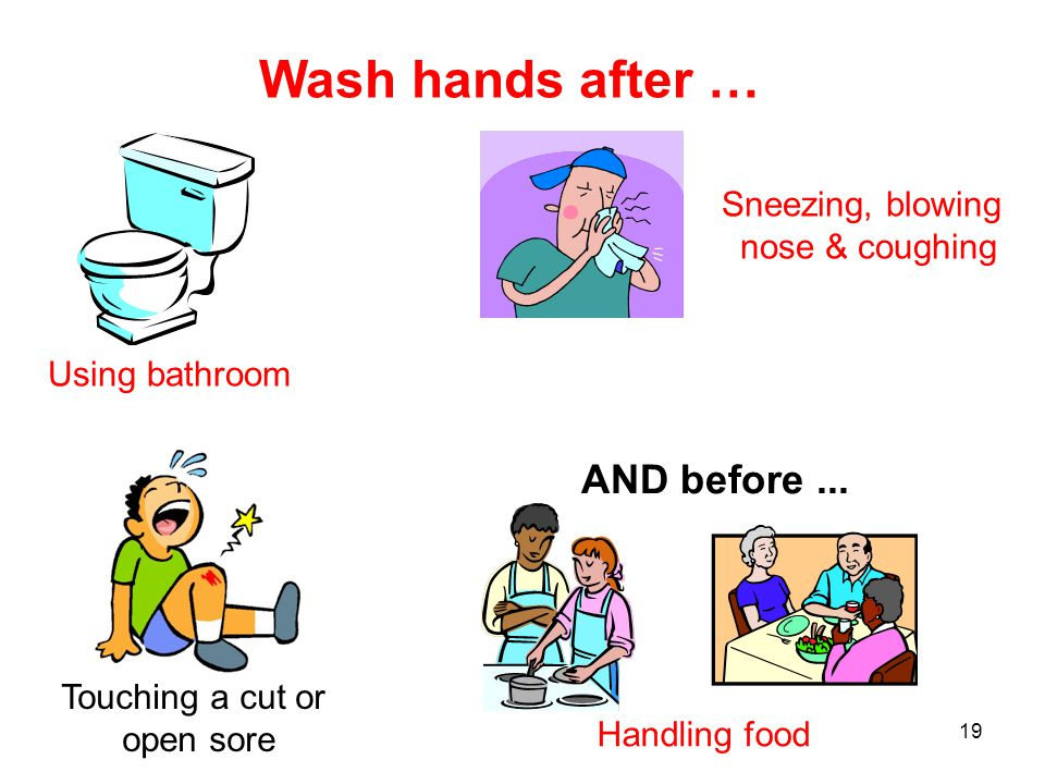 19 Wash hands after … Using bathroom Sneezing, blowing nose & coughing Touching a cut or open sore Handling food AND before...