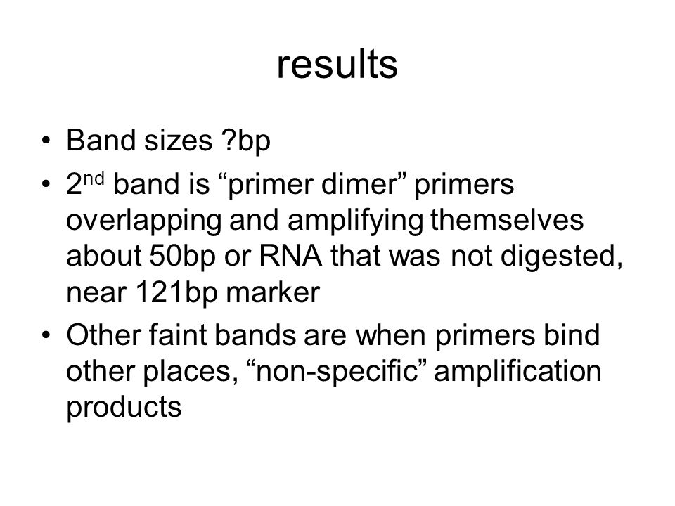 results Band sizes ?bp 2 nd band is primer dimer primers overlapping and amplifying themselves about 50bp or RNA that was not digested, near 121bp marker Other faint bands are when primers bind other places, non-specific amplification products