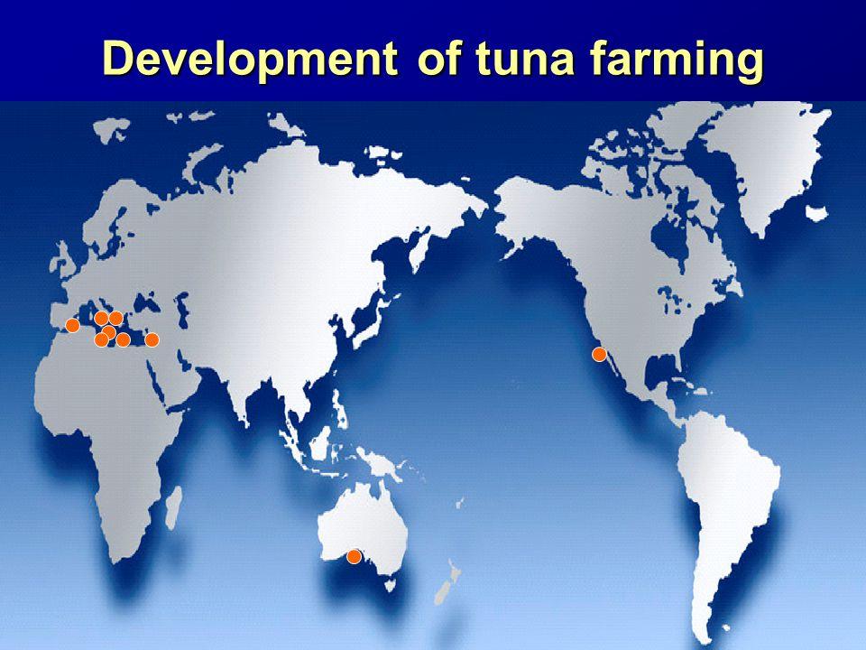 Development of tuna farming