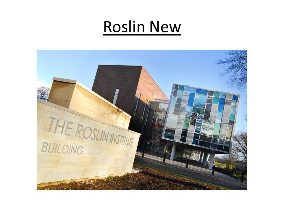 Roslin New