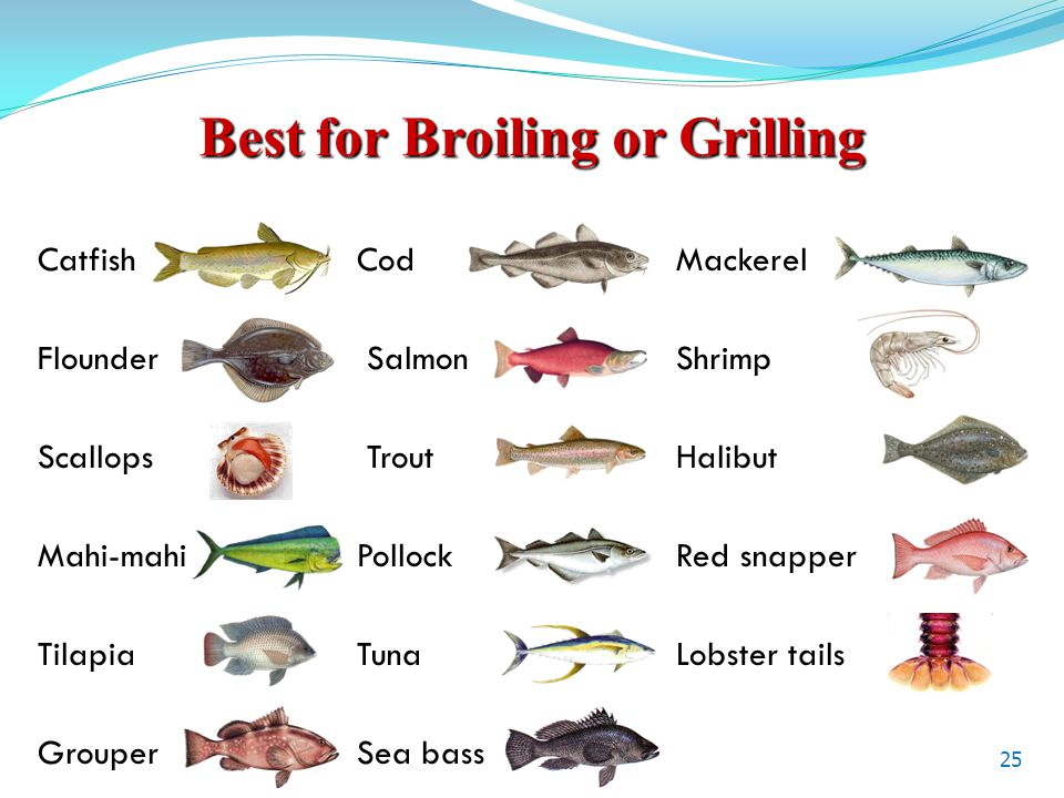Best for Broiling or Grilling Catfish CodMackerel Flounder Salmon Shrimp Scallops Trout Halibut Mahi-mahiPollockRed snapper Tilapia TunaLobster tails GrouperSea bass 25