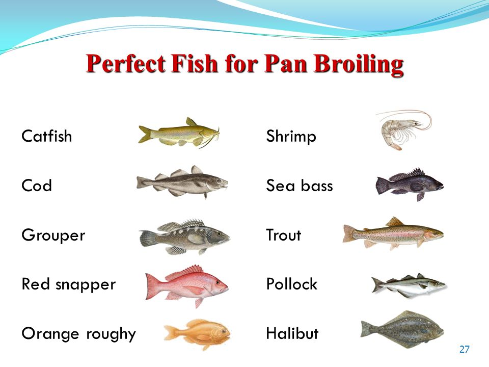 Perfect Fish for Pan Broiling Catfish Shrimp Cod Sea bass Grouper Trout Red snapperPollock Orange roughyHalibut 27