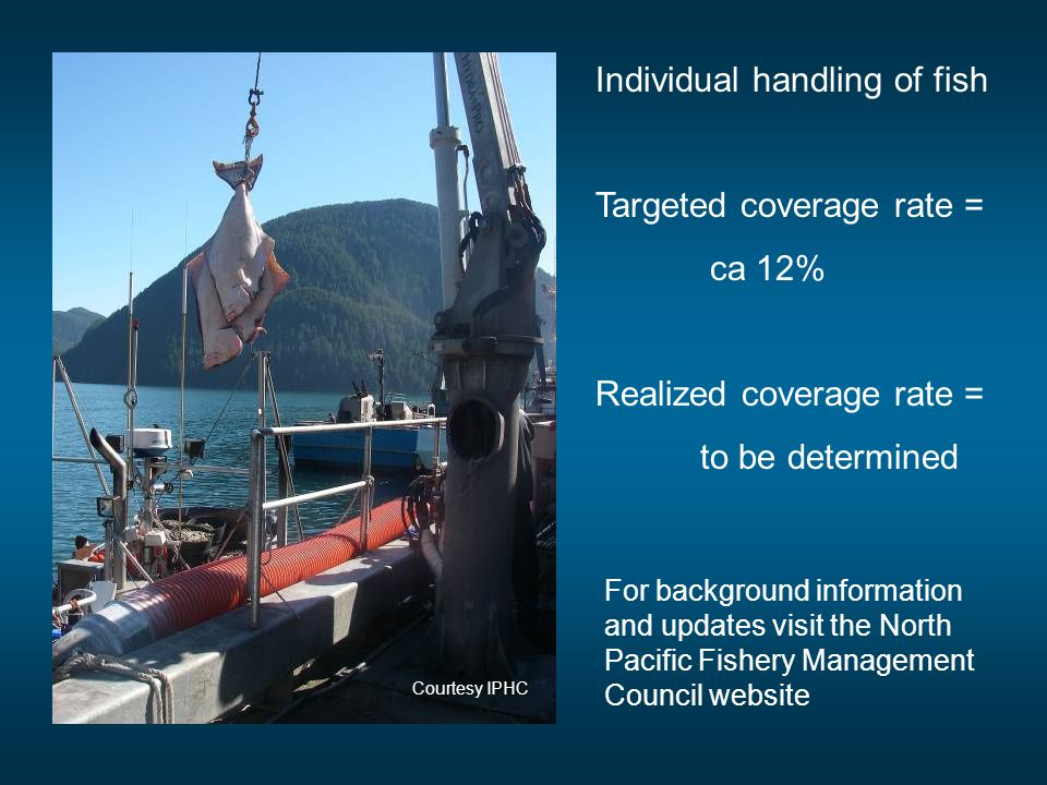 Individual handling of fish Targeted coverage rate = ca 12% Realized coverage rate = to be determined For background information and updates visit the