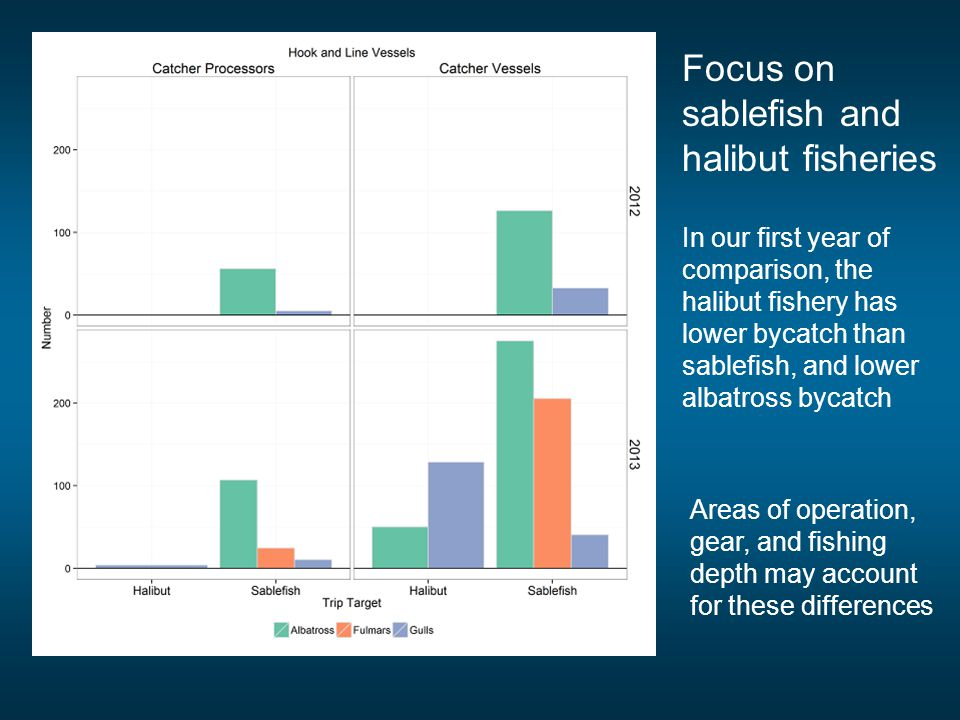 Focus on sablefish and halibut fisheries In our first year of comparison, the halibut fishery has lower bycatch than sablefish, and lower albatross bycatch Areas of operation, gear, and fishing depth may account for these differences