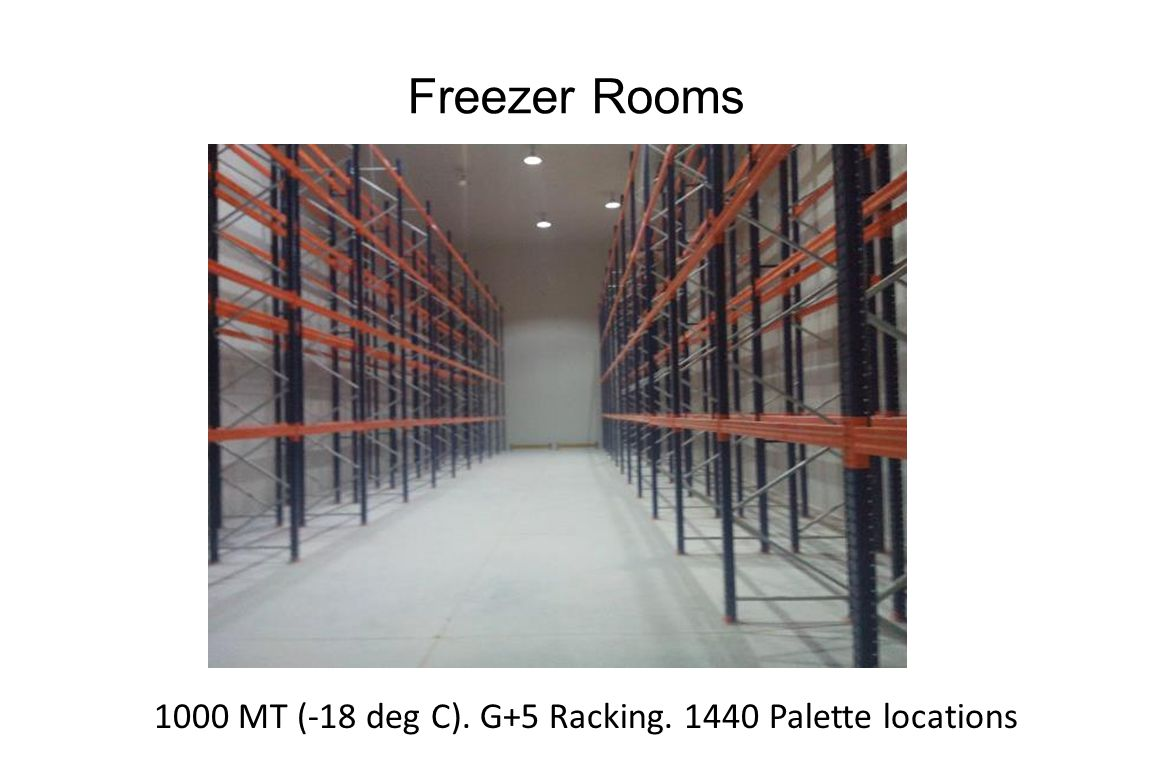 Freezer Rooms 1000 MT (-18 deg C). G+5 Racking. 1440 Palette locations