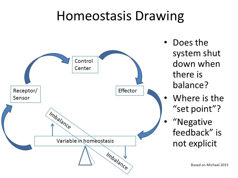 """Homeostasis Drawing Does the system shut down when there is balance? Where is the """"set point""""? """"Negative feedback"""" is not explicit Receptor/ Sensor Co"""