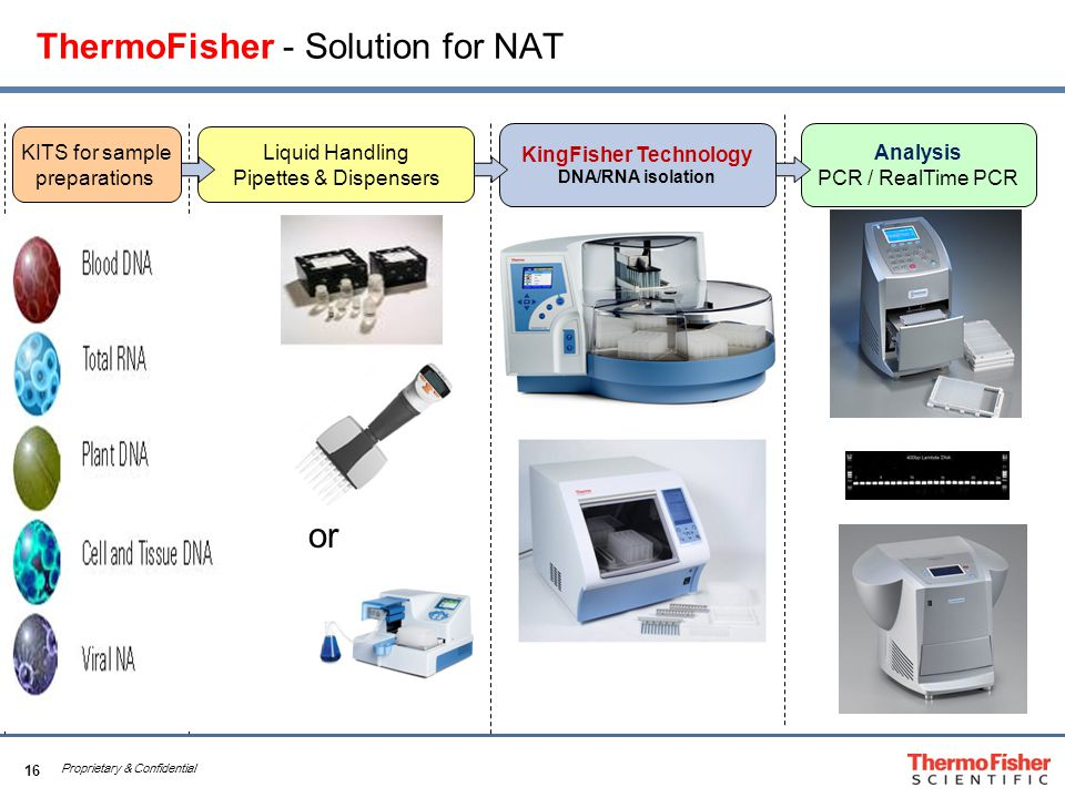 16 Proprietary & Confidential ThermoFisher - Solution for NAT Liquid Handling Pipettes & Dispensers KingFisher Technology DNA/RNA isolation Analysis PCR / RealTime PCR KITS for sample preparations or