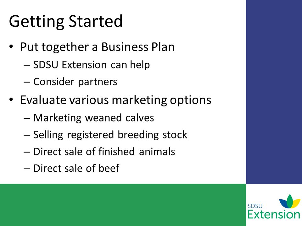Getting Started Put together a Business Plan – SDSU Extension can help – Consider partners Evaluate various marketing options – Marketing weaned calves – Selling registered breeding stock – Direct sale of finished animals – Direct sale of beef