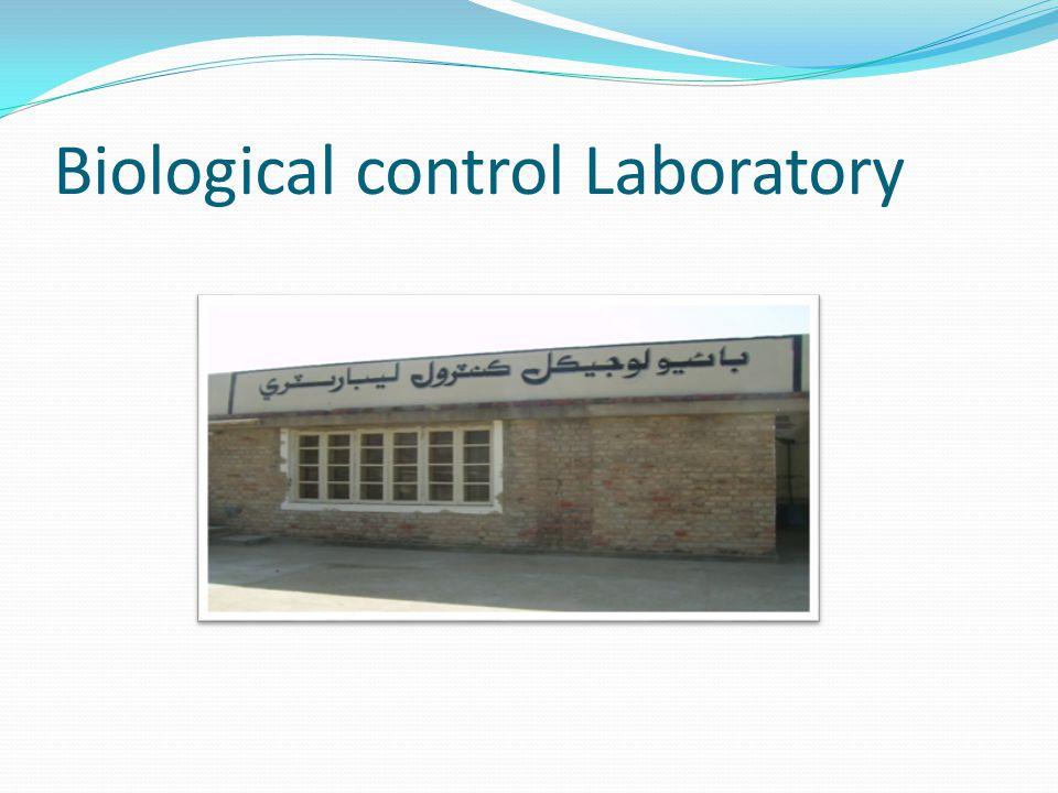 Biological control Laboratory
