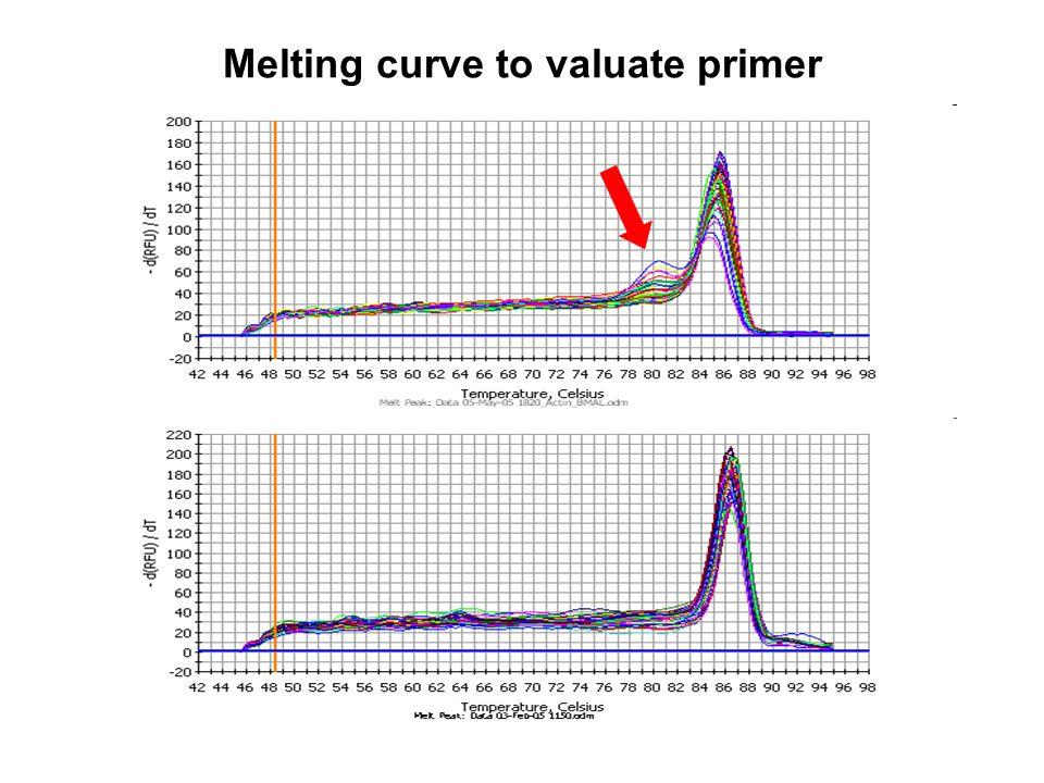 Melting curve to valuate primer