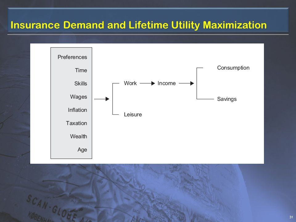 Insurance Demand & Lifetime Utility Maximization 30