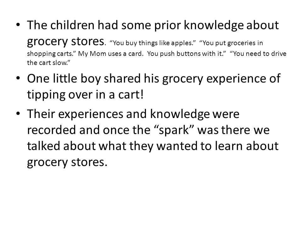 The children had some prior knowledge about grocery stores.