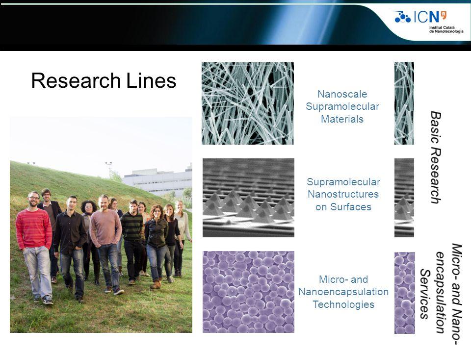 Nanoscale Supramolecular Materials Supramolecular Nanostructures on Surfaces Micro- and Nanoencapsulation Technologies Research Lines