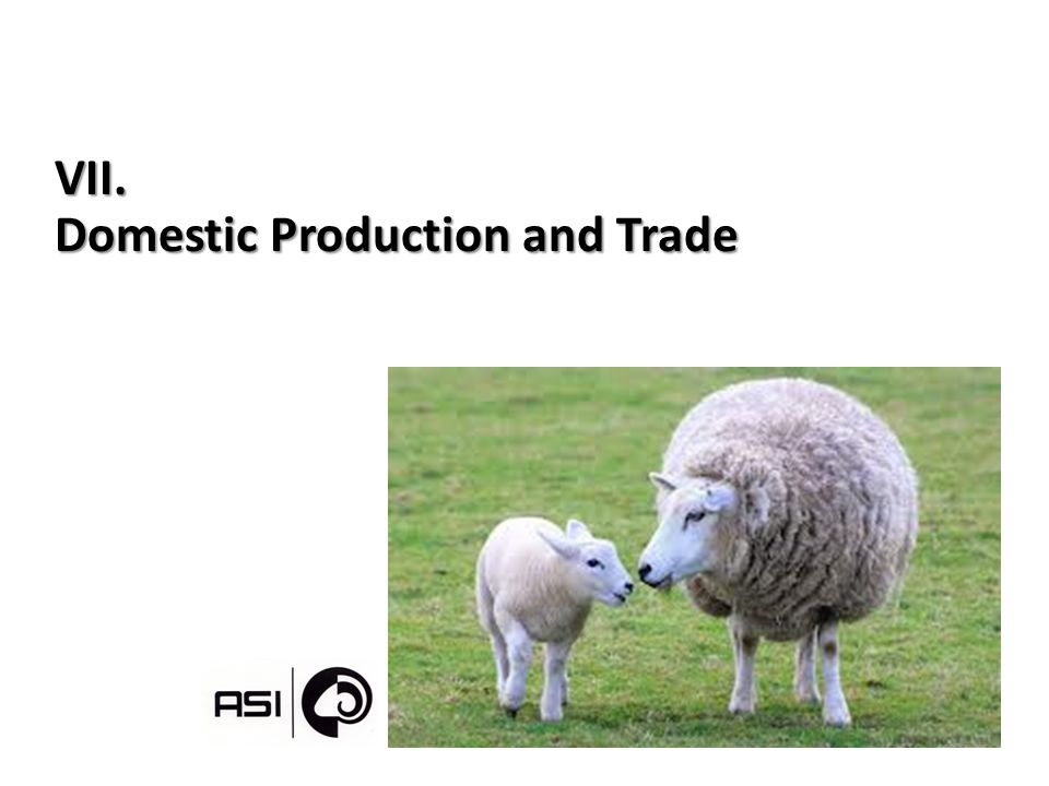 VII. Domestic Production and Trade