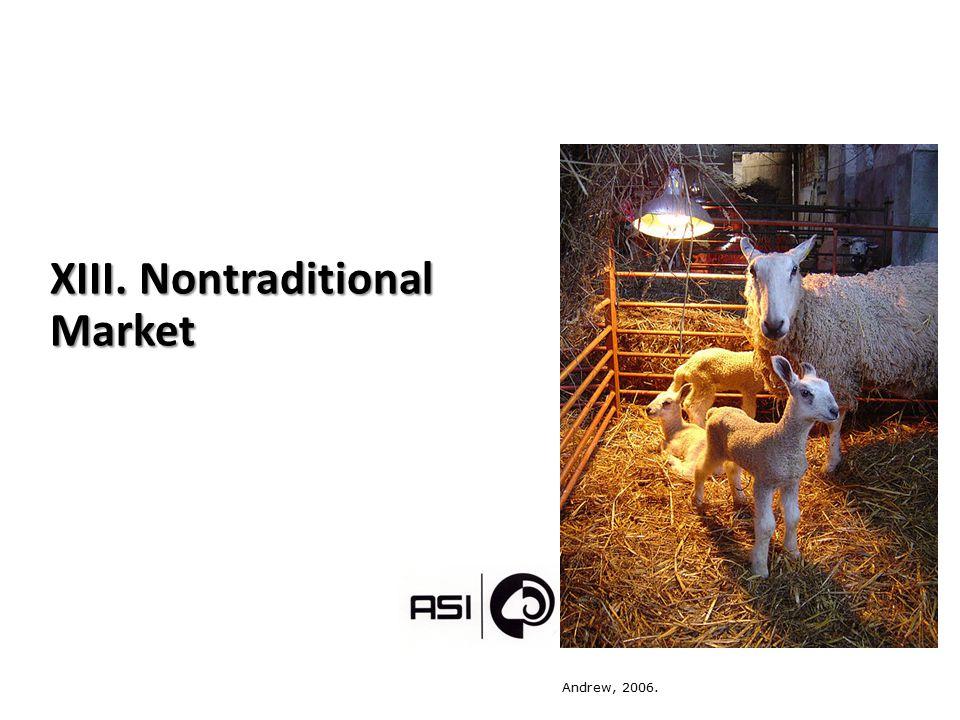 XIII. Nontraditional Market Andrew, 2006.