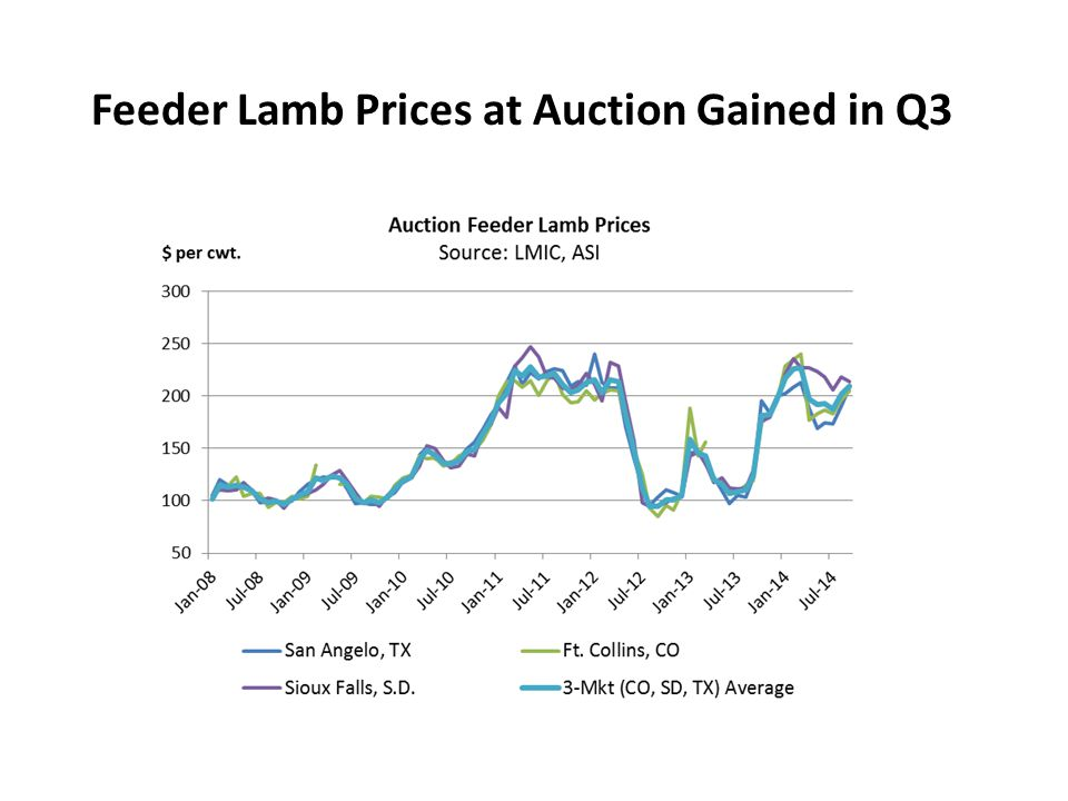 Feeder Lamb Prices at Auction Gained in Q3