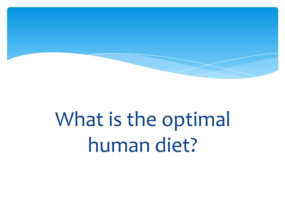 What is the optimal human diet?