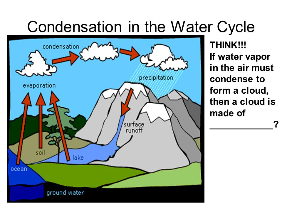 Condensation in the Water Cycle THINK!!.