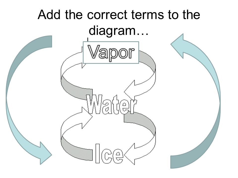 Add the correct terms to the diagram…