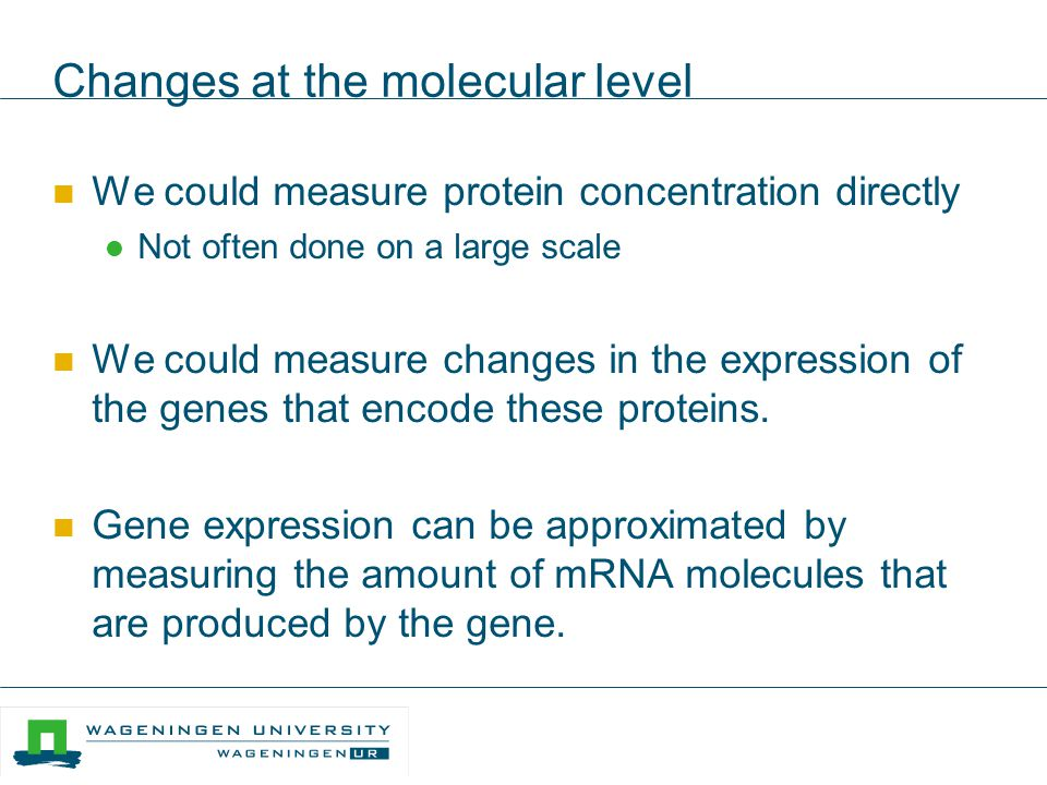 Changes at the molecular level We could measure protein concentration directly Not often done on a large scale We could measure changes in the express