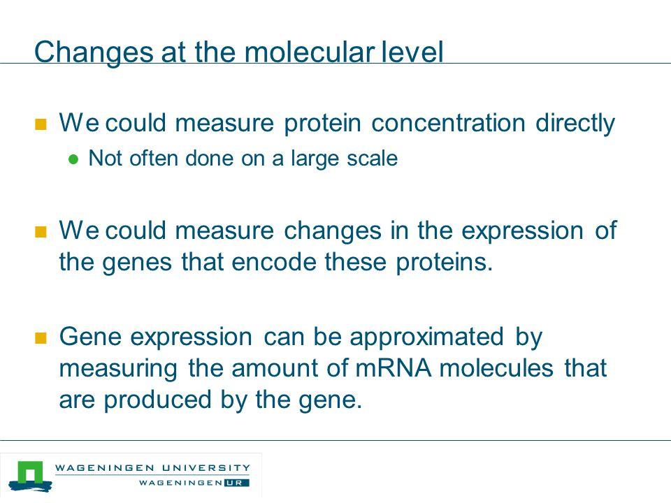 Edouard Severing RNA seq (II) Quantification