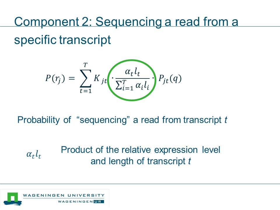 "Component 2: Sequencing a read from a specific transcript Product of the relative expression level and length of transcript t Probability of ""sequenci"