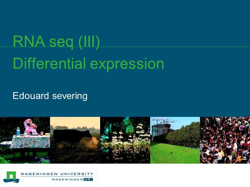 Edouard severing RNA seq (III) Differential expression