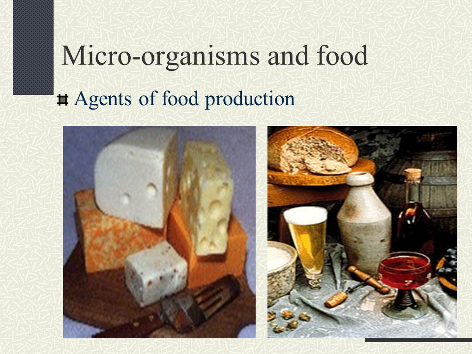 Micro-organisms and food Agents of food production