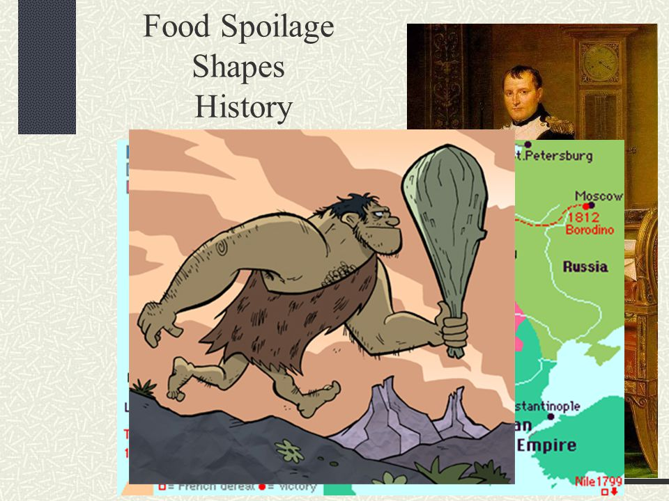 Food Spoilage Shapes History