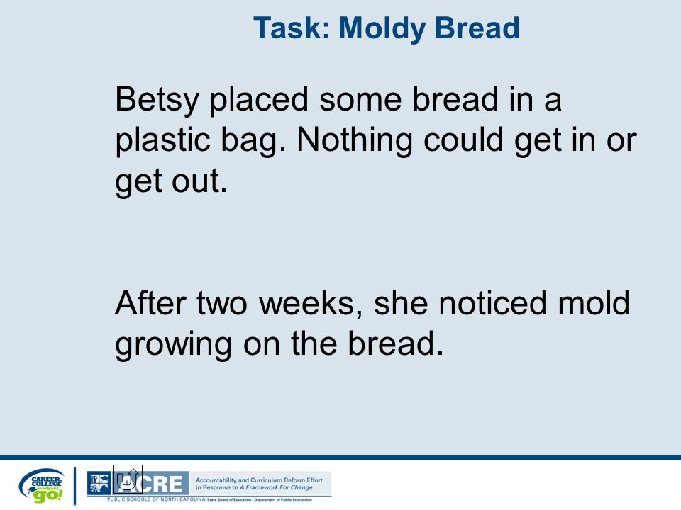 Task: Moldy Bread Betsy placed some bread in a plastic bag.