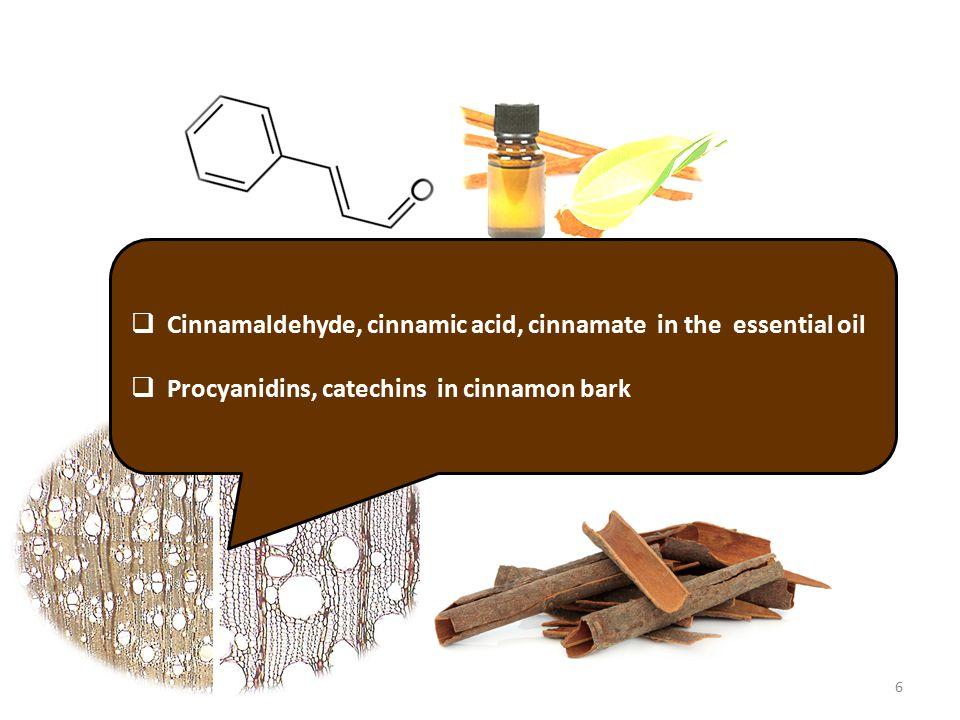  Cinnamaldehyde, cinnamic acid, cinnamate in the essential oil  Procyanidins, catechins in cinnamon bark 6