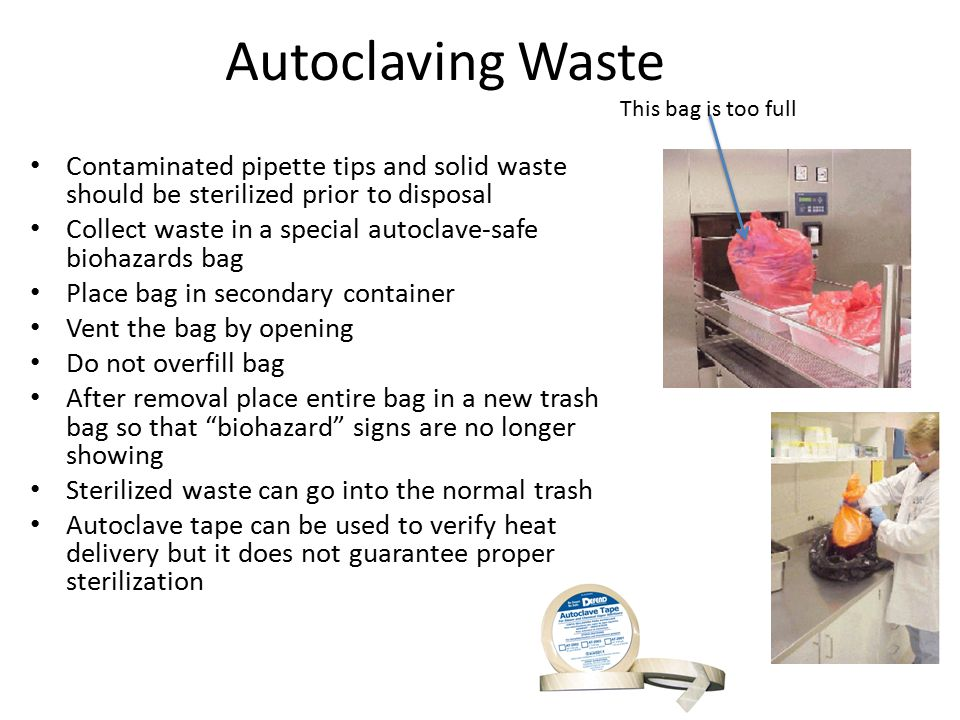 Autoclaving Waste Contaminated pipette tips and solid waste should be sterilized prior to disposal Collect waste in a special autoclave-safe biohazards bag Place bag in secondary container Vent the bag by opening Do not overfill bag After removal place entire bag in a new trash bag so that biohazard signs are no longer showing Sterilized waste can go into the normal trash Autoclave tape can be used to verify heat delivery but it does not guarantee proper sterilization This bag is too full