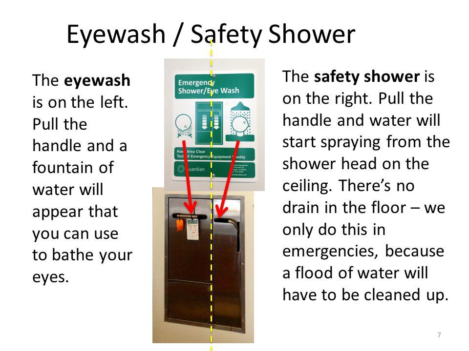 Eyewash / Safety Shower The eyewash is on the left.