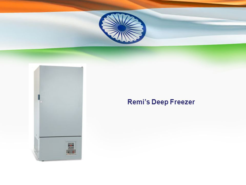 Remi's Deep Freezer