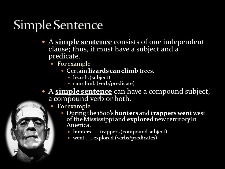 A simple sentence consists of one independent clause; thus, it must have a subject and a predicate.