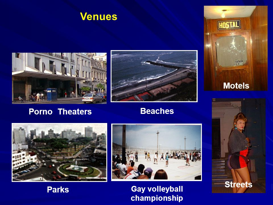 Venues Porno Theaters Streets Motels Gay volleyball championship Parks Beaches