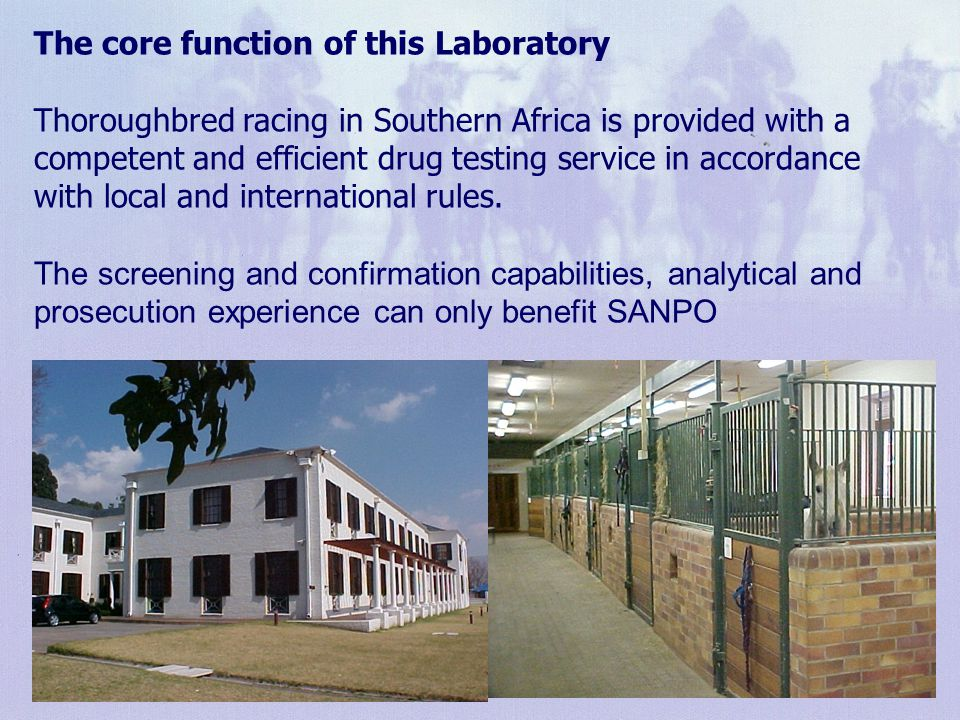 4 Analytical Capabilities The list of prohibited substances being screened for within horseracing is extensive.