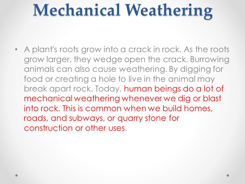 Plants and Animals in Mechanical Weathering A plant s roots grow into a crack in rock.