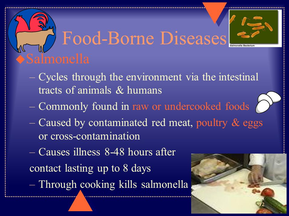 Food-Borne Diseases u Salmonella –Cycles through the environment via the intestinal tracts of animals & humans –Commonly found in raw or undercooked f