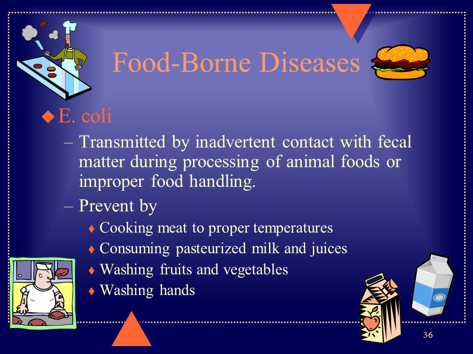 Food-Borne Diseases u E. coli –Transmitted by inadvertent contact with fecal matter during processing of animal foods or improper food handling. –Prev
