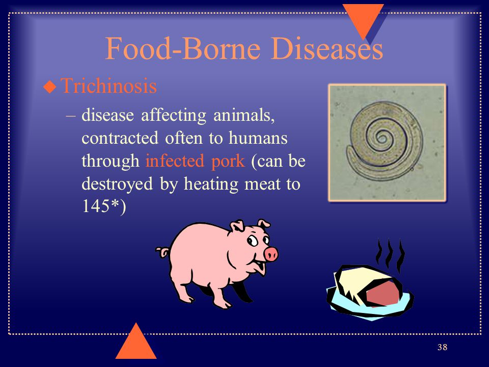 Food-Borne Diseases u Trichinosis –disease affecting animals, contracted often to humans through infected pork (can be destroyed by heating meat to 14