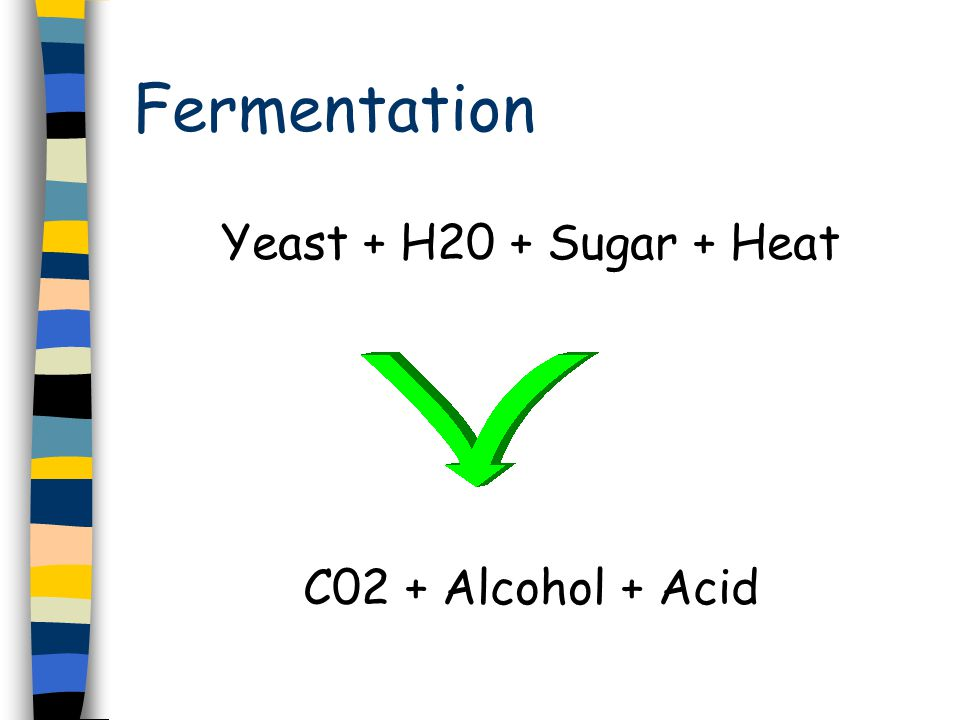 Yeast activity related to temperature