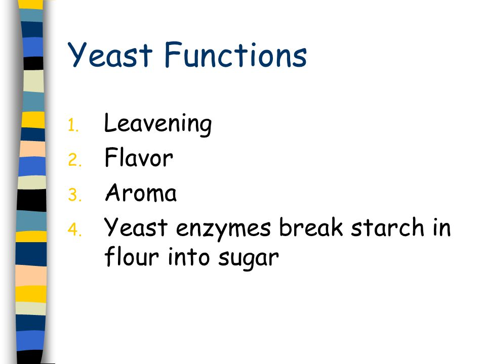 Yeast Functions 1. Leavening 2. Flavor 3. Aroma 4. Yeast enzymes break starch in flour into sugar