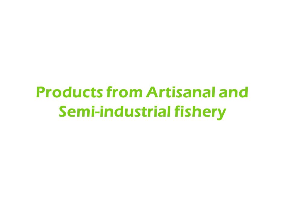 Products from Artisanal and Semi-industrial fishery