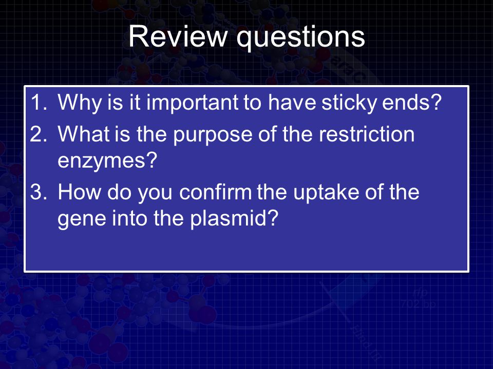 Review questions 1.Why is it important to have sticky ends.
