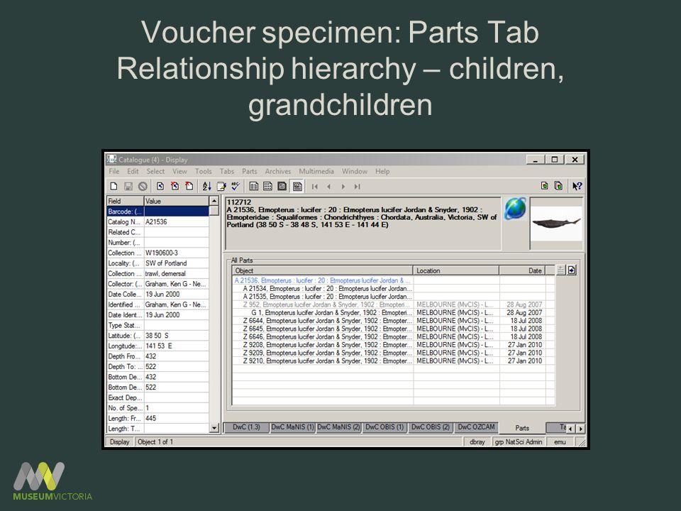 Voucher specimen: Parts Tab Relationship hierarchy – children, grandchildren
